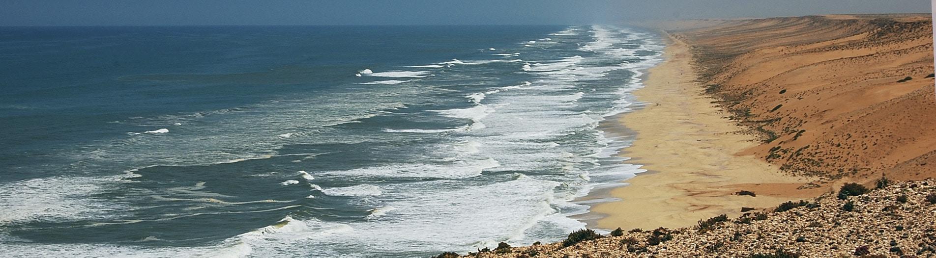 Surf Western Sahara