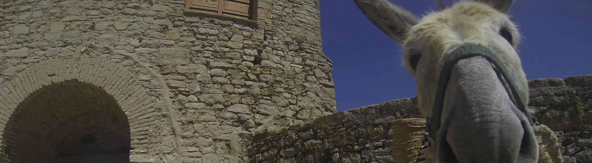 Castillo de Castellar de la Frontera - Pueblos Blancos