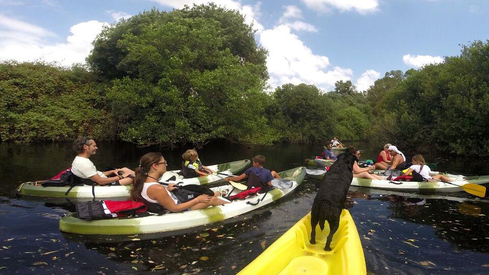 excursion kayak rio palmones