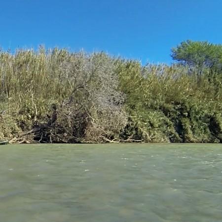 Birding en Kayak