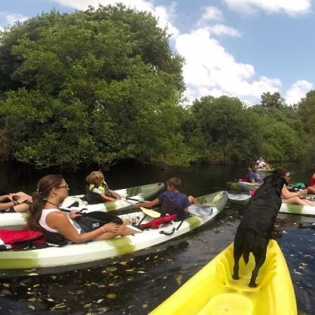 rutas en kayak algeciras en rio palmones