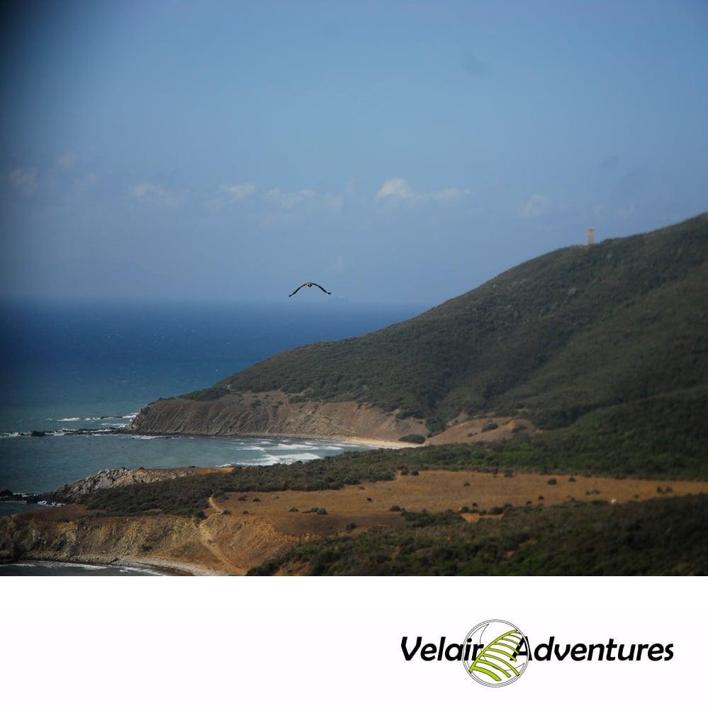 Ruta_4x4_Andalucia_Estrecho_Birding_Morocco_Tarifa_cadiz_rutas con encanto_Velair Adventures (2)