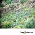 Ruta_4x4_Andalucia_Estrecho_Birding_Morocco_Tarifa_cadiz_rutas con encanto_Velair Adventures (4)